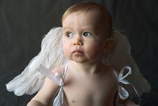 Angel Baby Royalty Free Stock Photos