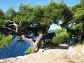Free Nature Of Makarska Stock Photos - 18700513