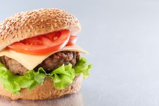 Free Cheeseburger With Tomatoes And Lettuce Royalty Free Stock Photo - 18704595