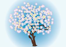 Free A Flowering Tree. Royalty Free Stock Image - 18704996