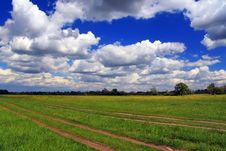 Free Summer Field With Clouds Royalty Free Stock Images - 18710309