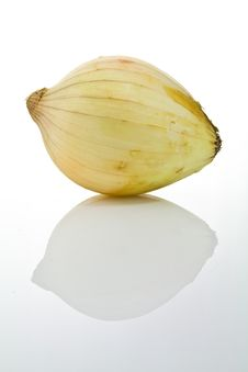 Free An Onion Stock Photo - 18713230