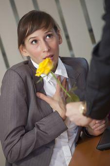 Free Man Giving Rose Stock Photo - 18714080