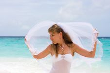 Free Bride On A Tropical Beach Royalty Free Stock Photos - 18714818