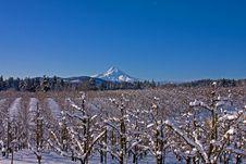 Valley Snow Royalty Free Stock Photos
