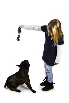 Free French Bulldog And Little Girl Playing Stock Photography - 18719002