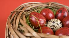 Free Easter Eggs Royalty Free Stock Photography - 18719087