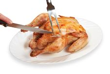 Free Chicken Royalty Free Stock Photo - 18719785