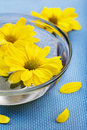Free Yellow Flowers In Glass Bowl Stock Photos - 18727283