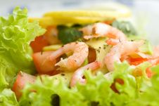 Free Salad With Shrimps And Avocado Royalty Free Stock Images - 18720339
