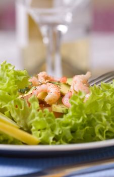 Free Salad With Shrimps And Avocado Stock Photo - 18720360