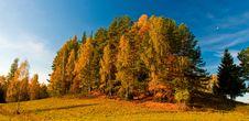 Free Autumn Royalty Free Stock Photography - 18720397