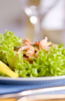 Free Salad With Shrimps And Avocado Stock Images - 18720574