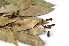 Free Bay Leaf Stock Photography - 18721832