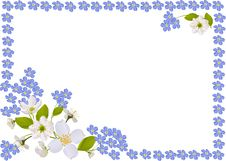 Free White And Blue Spring Flowers Frame Stock Photo - 18722940