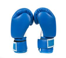 Free Boxing Gloves Royalty Free Stock Image - 18725466