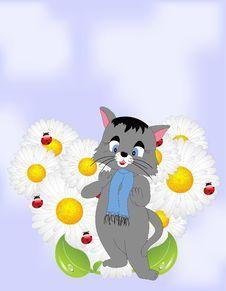 Free Cartoon Cat With Daisies Royalty Free Stock Photos - 18725878