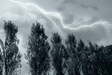 Free Lightning Over The Tree Royalty Free Stock Photos - 18726548