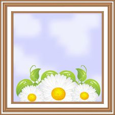 Free Wooden Frame With Daisies Inside Stock Images - 18726814