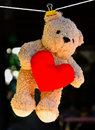 Free Wet Teddy On A Clothesline Royalty Free Stock Photos - 18730558