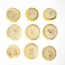 Free Nine Lemon Slices Against An Isolated Background Stock Images - 18731114