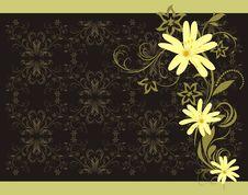 Free Spring Bouquet. Decorative Background Stock Photo - 18734720