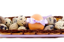 Free Quail And Chicken Eggs Royalty Free Stock Photo - 18735095