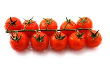 Free Tomatoes Royalty Free Stock Photography - 18735367