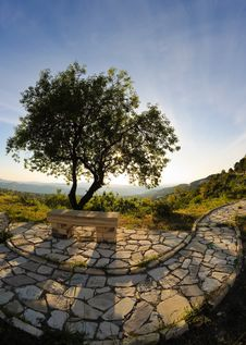 Stone Bench And Tree Royalty Free Stock Image