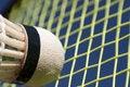 Free Macro Badminton Royalty Free Stock Photography - 18746187