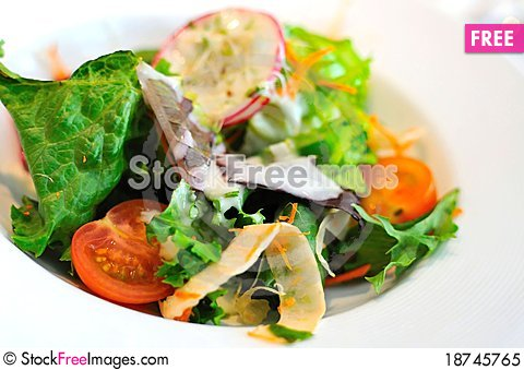 Free Healthy And Nutritious Vegetable Salad Royalty Free Stock Photo - 18745765