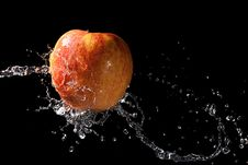 Free Apple In Water Stock Photos - 18742443