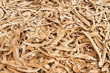 Free Mushroom Farm Stock Images - 18745644