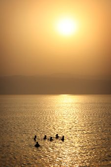 Free Jordan: Tourists Floating In Dead Sea Stock Photography - 18746942