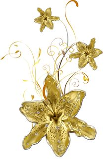 Free Gold Lily Royalty Free Stock Photography - 18748097