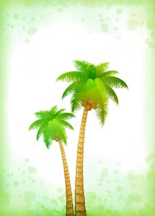 Free Vacation Background With Palm Stock Photo - 18749040