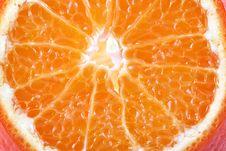 Free Orange Royalty Free Stock Photography - 18750517
