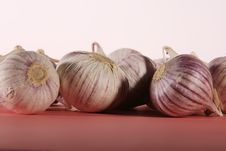 Free Garlic Solo Royalty Free Stock Image - 18752916