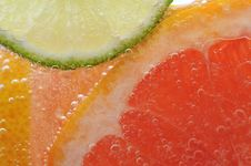 Free Sliced Citrus Stock Image - 18754611