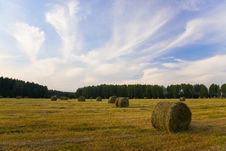 Free Haystacks On The Field Royalty Free Stock Photos - 18755358