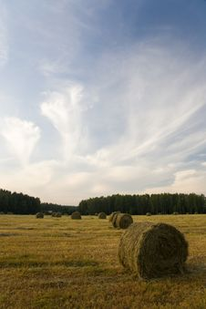 Free Haystacks On The Field Royalty Free Stock Photography - 18755377