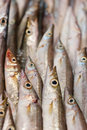 Free Fish At The Market Stock Images - 18767934