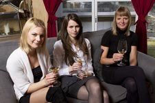 Free Young Girls Having Dinner In Fancy Restaurant Stock Photos - 18761303