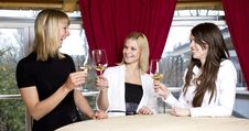 Free Young Girls Having Dinner In Fancy Restaurant Stock Photography - 18761362