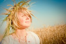 Free Young Woman On Wheat Field Royalty Free Stock Image - 18762326