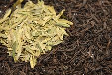 Free Tea Leaves Royalty Free Stock Photo - 18763175