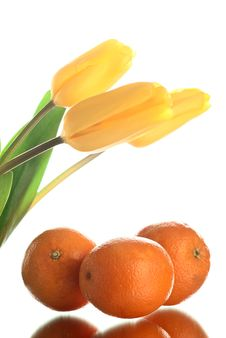 Free Flowers And Oranges. Stock Photo - 18763610