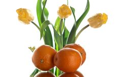 Flower And Oranges. Royalty Free Stock Photos