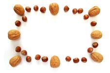 Free Nuts Photo Frame Royalty Free Stock Photo - 18764655
