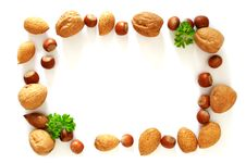 Free Nuts Photo Frame Stock Images - 18764924